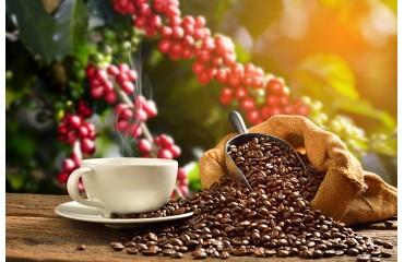 La complexité du café